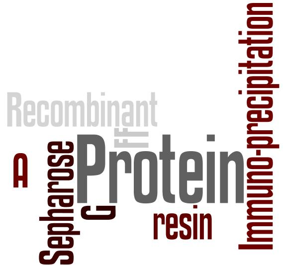 Fastback Protein A & G Resins