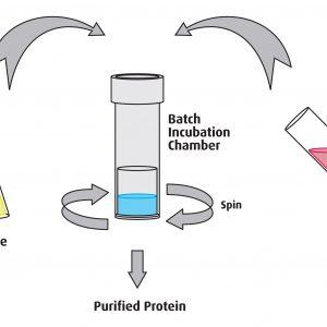 Proteus '1-Step Batch' Mini Spin Columns, 40 unit pack