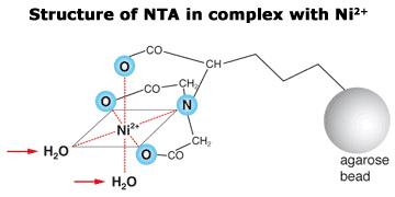 Super-NiNTA1 - Super Nickel NTA Affinity Resin (1ml)