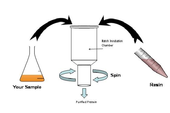 Proteus '1-Step Batch' Midi Plus Spin Columns, 8 unit pack
