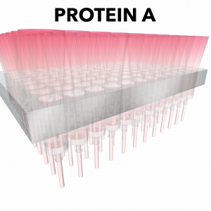 Optima PRO-D Protein A 96 well Screen (2 plates)